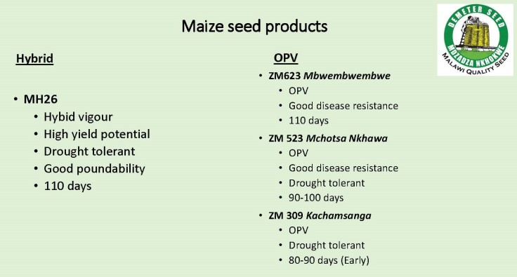 GS DAL product info Maize