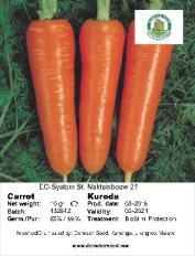 Carrot Kuroda front